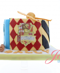 Harry Potter taart Jose bakery